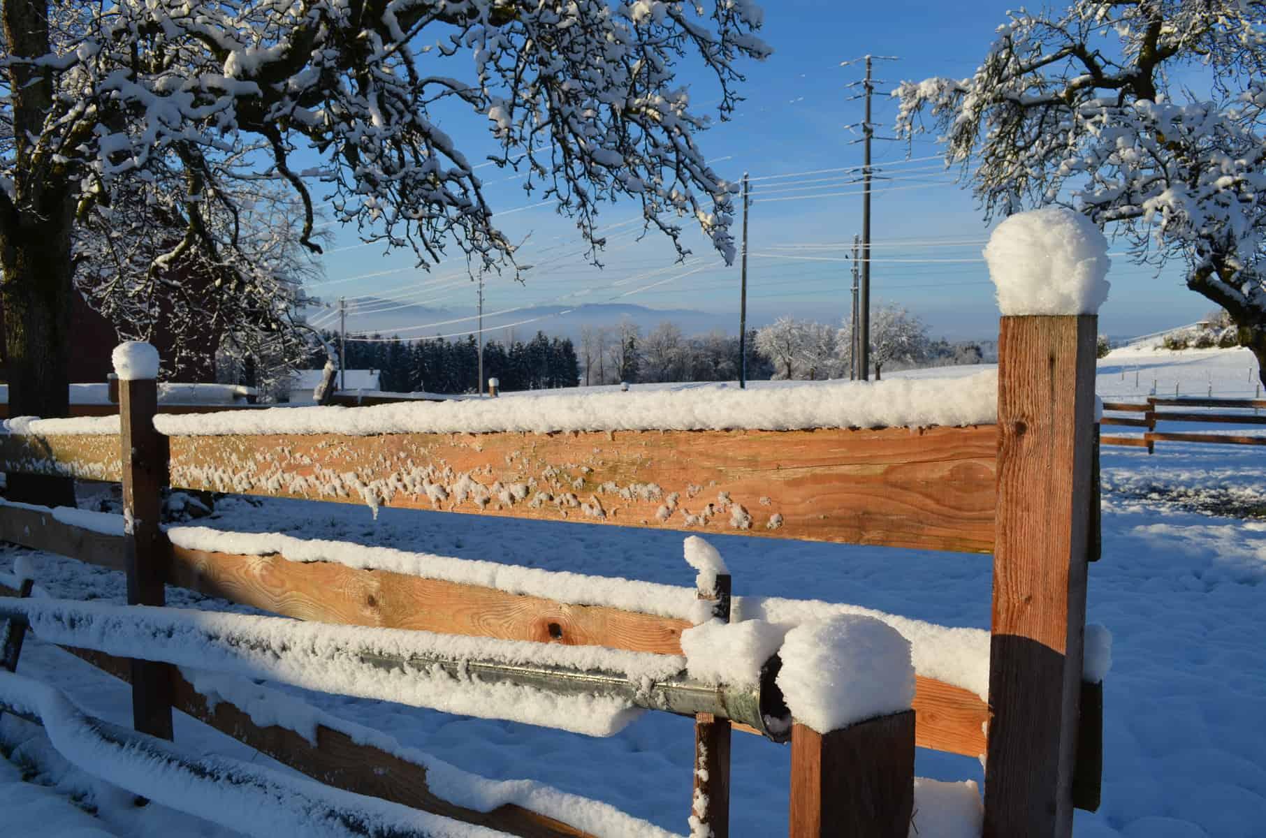 Winterimpression Bauernhof Birch5
