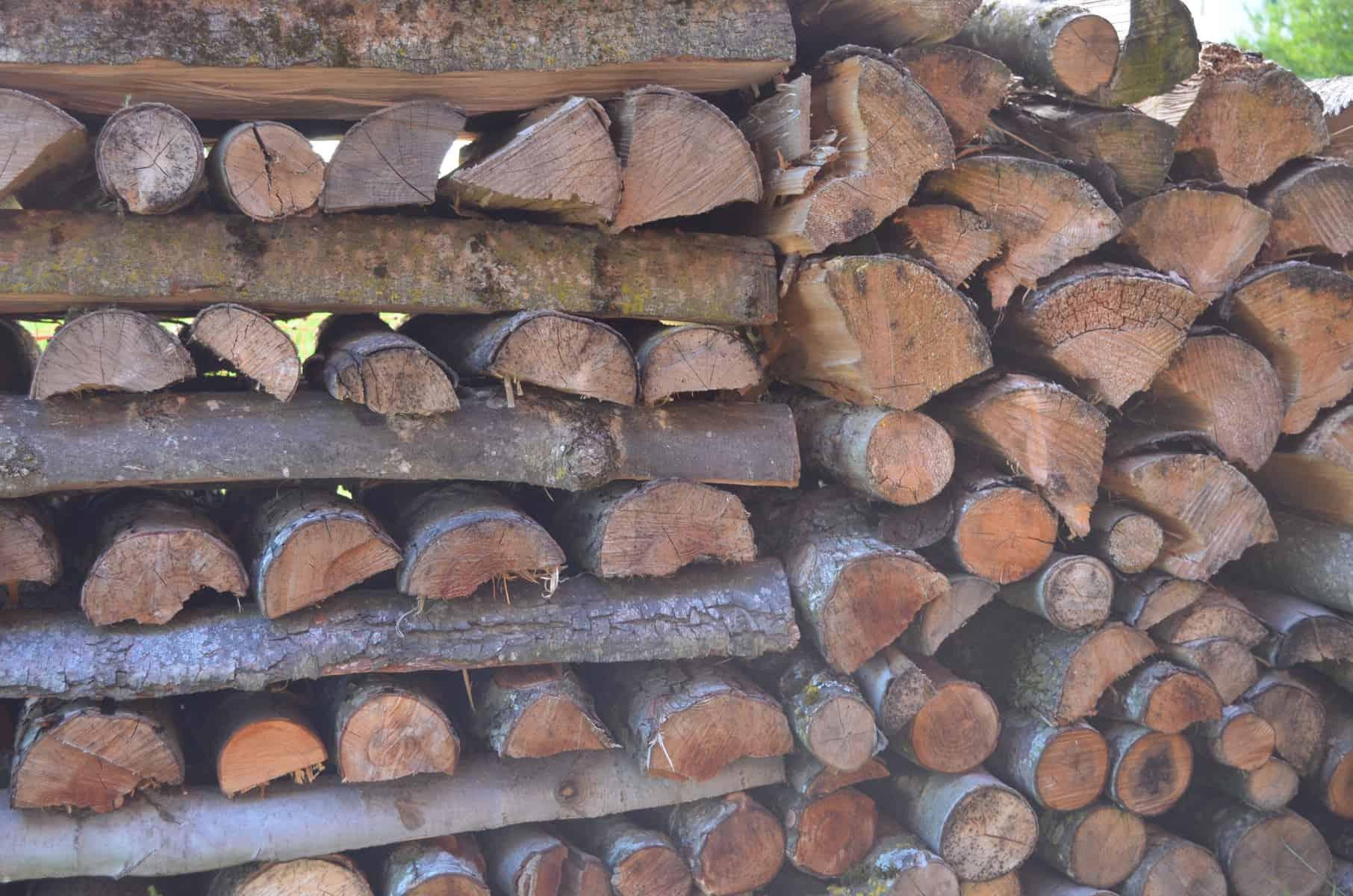 Impression Birch5 Bauernhof